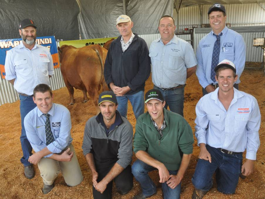 The $10,500 sale-topper with David Galpin, buyer Ian Mibus and sons Nathan and Aiden (front centre), South West Farmers' Michael Goldby, auctioneers Ethan Bronca and Matt Treglowan and Mason Galpin.